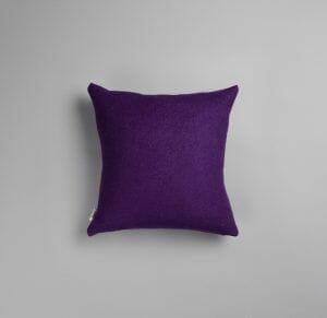 106564 Violet