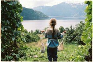 Ester, skappel strikkepakke, aaberge, stripegenser, tone damli, strikkesett, skappelpakke, skappelsett,